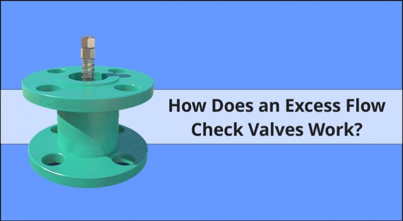 How Does an Excess Flow Check Valves Work